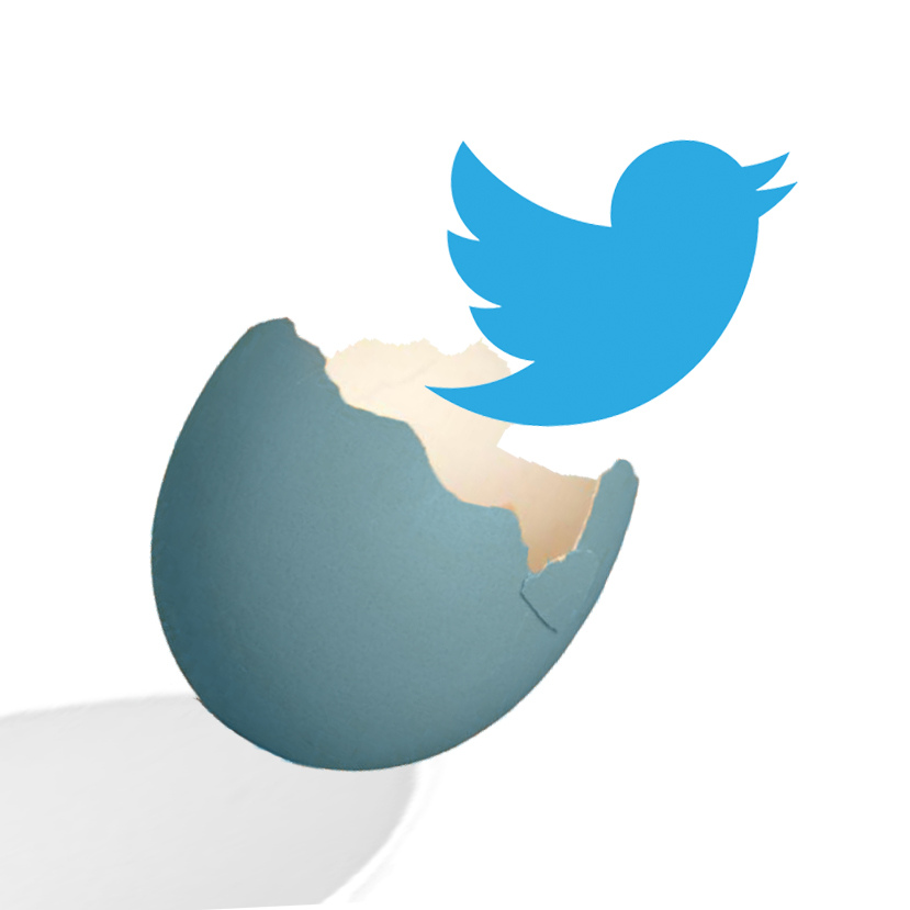 Illustration of the twitter bird flying away from a hatched egg